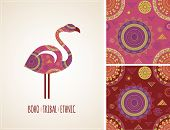 picture of flamingo  - Bohemian - JPG