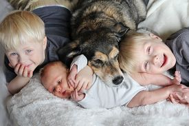picture of laying-in-bed  - Three happy young children including a newborn baby girl a toddler and their big brother are laying in bed snuggling with their pet dog - JPG