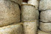 image of dry grass  - Stacked circular hay bale texture with dried baled pasture grass for use as winter fodder for agricultural livestock stored in a barn - JPG