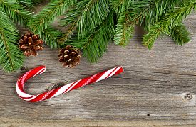 image of candy cane border  - Christmas border with pine tree branches cones and a single large candy cane on rustic wooden boards - JPG