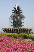 Pineapple Fountain In Waterfront Park Charleston Sc