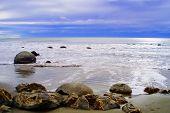 Beautiful And Quiet Shore
