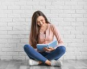 Beautiful young woman with book sitting on floor near brick wall poster