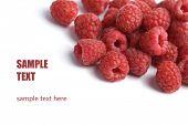 fresh raspberries background isolated