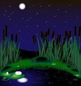 Lago de noite