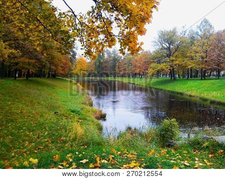 poster of Autumn Trees In Sunny October Park Lit By Evening Sunshine. Colorful Autumn Landscape With Sunbeams
