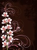 White Orchids And Pink Swirls With Grunge Frame (Vector)