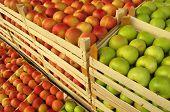 Постер, плакат: яблоки в деревянные ящики на рынке