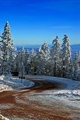 Mountain Road With Snow And Trees