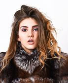 Girl Fur Coat Posing With Hairstyle On White Background Close Up. Prevent Winter Hair Damage. Woman  poster