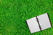 Old  notebook  on fresh spring green grass.