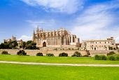 Cathedral of Majorca La seu view from grass garden under blue sky