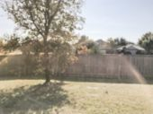 Blurry Background Backyard Of House With Fence And Colorful Autumn Leaves In Texas poster