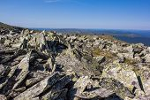 Huge Boulders And Kurumnik Feature Of The Ural Mountains. Texture Of Old Stones With Lichen On A Bac poster