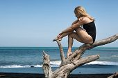 Girl With Slim Body In Swimsuit Sit And Relax On Old Tree Snag, Posing On Black Sand Sea Beach. Youn poster
