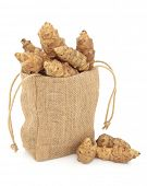 Jerusalem artichoke raw vegetables in a hessian drawstring sack and loose over white background.