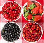 Wild berries in bowls - blueberry, redcurrant, strawberry