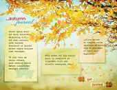 Autumn Journal - Background page with fall leaves on tree branches, falling leaves and worn, faded paper notes against the warm fall background