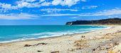 Coast of the Tasman sea. Panorama