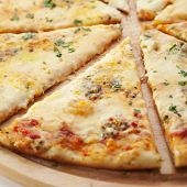 Pizza with Various Type of Cheese (Mozzarella, Roquefort, Feta and Processed Cheese)