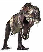 Dinos-Trex