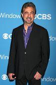 LOS ANGELES - 15 de setembro: Joe Mantegna chega na festa de estréia de outono de 2012 CBS no Greystone Manor