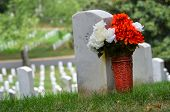 picture of arlington cemetery  - Headstones in Arlington National Cemetery  - JPG