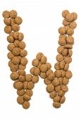 Ginger Nut Alphabet W