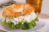 image of croissant  - Closeup of a chicken salad and lettuce on a croissant roll