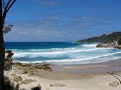 Honeymoon Cove, Moreton Island