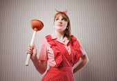 Housewife With Plunger