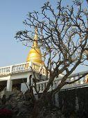 Templo budista de tailandês