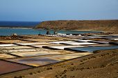 Salt In  Lanzarote Stone Sky  Water  Coastline And Summer