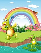 Illustration of a turtle and a frog playing at the pond with a rainbow above