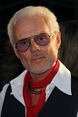 Michael Des Barres at the