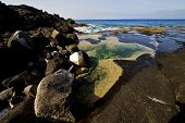 Landscape   In Lanzarote Spain Isle