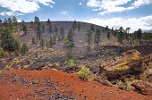 stock photo of scoria  - Pine trees at Sunset Crater volcano in Flagstaff - JPG