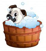 Illustration of a cute bulldog inside the bathtub on a white background