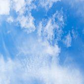 Cirrus White Clouds In Blue Sky