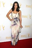 LOS ANGELES - JUN 19:  Camila Banus at the ATAS Daytime Emmy Nominees Reception at the London Hotel