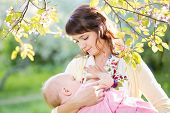 image of child feeding  - young mother breast feeding her baby girl at sunny day - JPG