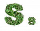 Letter S On Green Grass Isolated