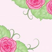 Beautiful vector background with roses