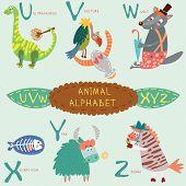 Very Cute Alphabet.u, V, W, X, Y, Z Letters. Ultrasaurus, Vulture, Wolf, X-ray Fish, Yak, Zebra