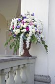 Vase With Beautiful Flowers On Old Manor House Fence