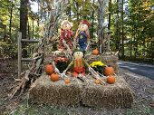 picture of split rail fence  - Three scarecrows sitting on bales of straw with orange pumpkins of various sizes - JPG