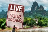 Live Your Dreams sign with a exotic landscape on background