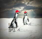 Funny picture of two penguins as a ice fishermen floating on iceberg.
