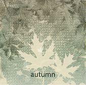 Autumn Vintage Grunge Background