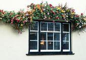Pub-Fenster